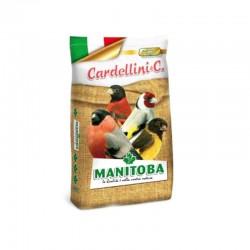 Cardellino Extra Manitoba