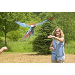 Sistema di volo per pappagalli