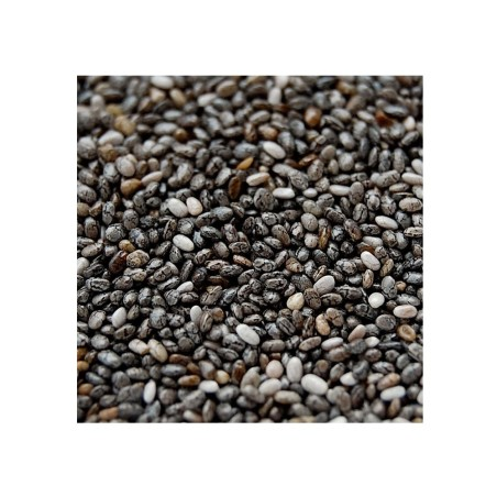 Chia Manitoba (Hispanica di Salvia)