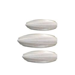 Ossi di seppia per uccelli - Busta da 1kg