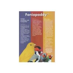 Foniopaddy
