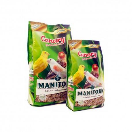 Canarini Best Premium Manitoba