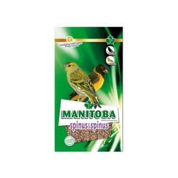 Spinus e Spinus - Manitoba