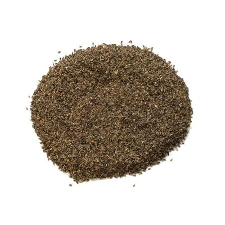 Semi di cicoria