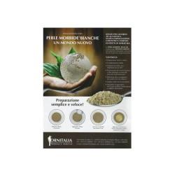 Perle morbide bianche - Ornitalia