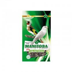 Alta Germinazione Manitoba