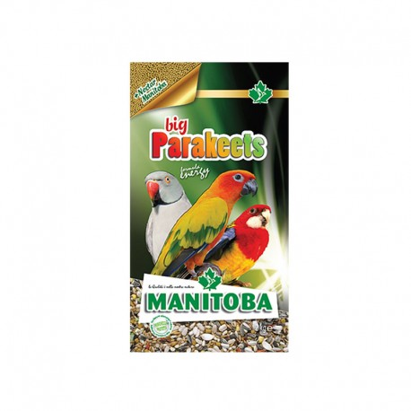Big Parakeets Energy Manitoba