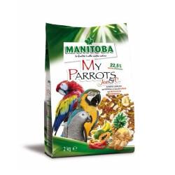 My Parrots Ara - Manitoba