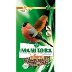 Indigena New Manitoba Ciuffolotto e Crociere