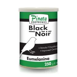 Black Noir - Pineta Zootecnici