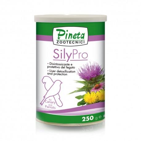 Sily Pro Pineta