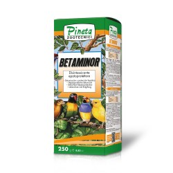 Betaminor
