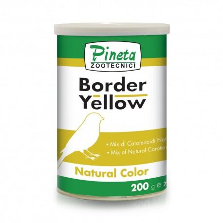 Border Yellow