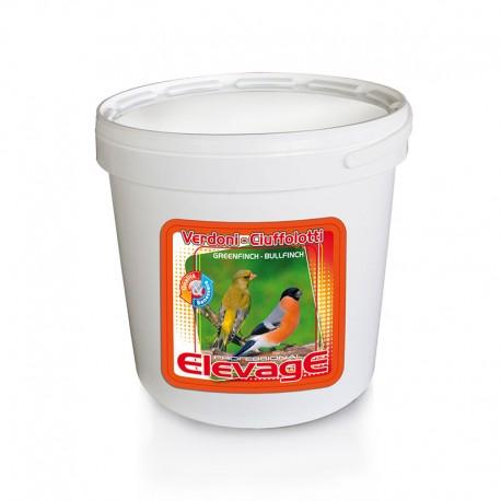 Verdoni-Ciuffolotti Elevage