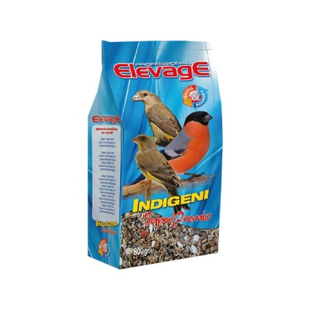 Indigeni Super Premio Elevage
