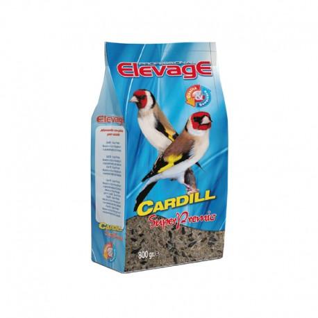 Cardill Super Premio Elevage
