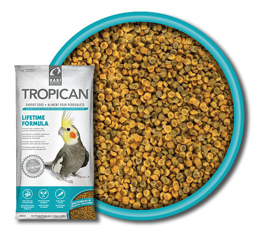 Hari Tropican Lifetime con granuli da 2mm senza conservanti, coloranti e aromi artificiali