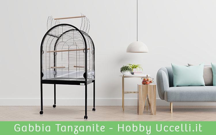 Gabbia Tanzanite per pappagalli are, cenerini, cacatua, amazzone